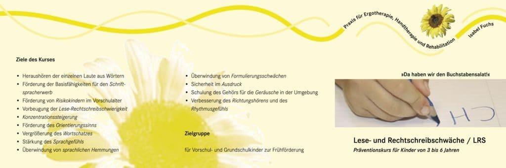 thumbnail of lese-und-rechtschreibschwaeche-lrs